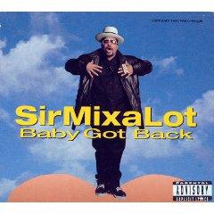 Álbum Baby Got Back