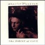 Álbum The Secret of Time