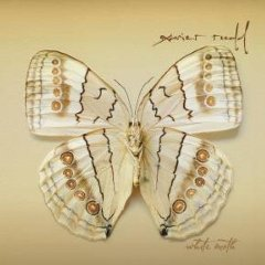 Álbum White Moth