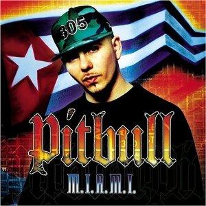 Álbum M.I.A.M.I.